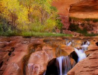 Coyote Gulch Trail Guide