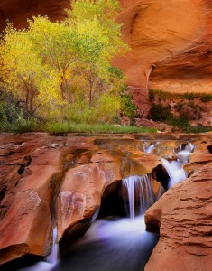 Coyote Gulch by Michael Anderson