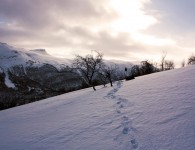Winter Weather Backpacking