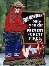 Smokey Bear Put Out Campfires